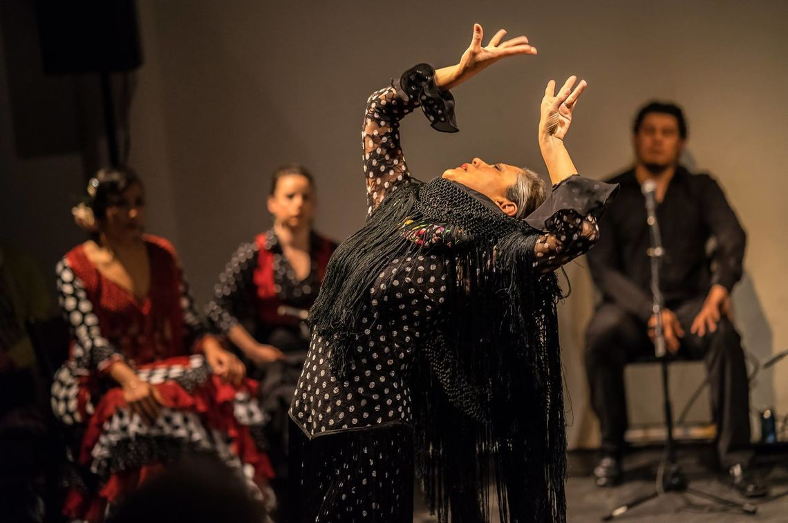 Image result for The Voices of Women in Flamenco