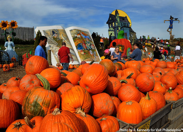 pumpkinland at linvilla orchards jpg 500h