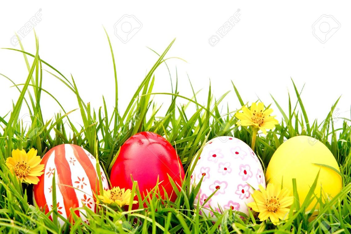 easter eggs in grass border 19