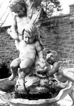 tyler cherubs