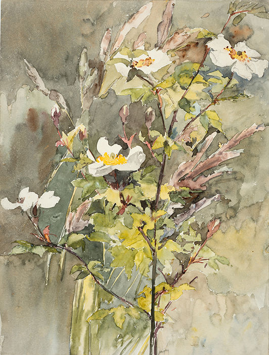 politics and paint wildflowers