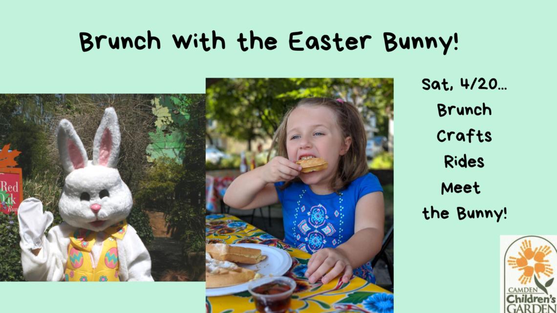 brunch bunny fb 2