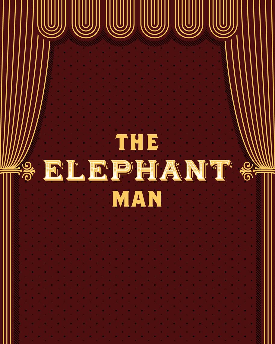 fall 2017 elephant