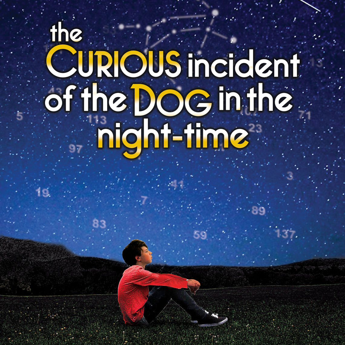curious incident print file