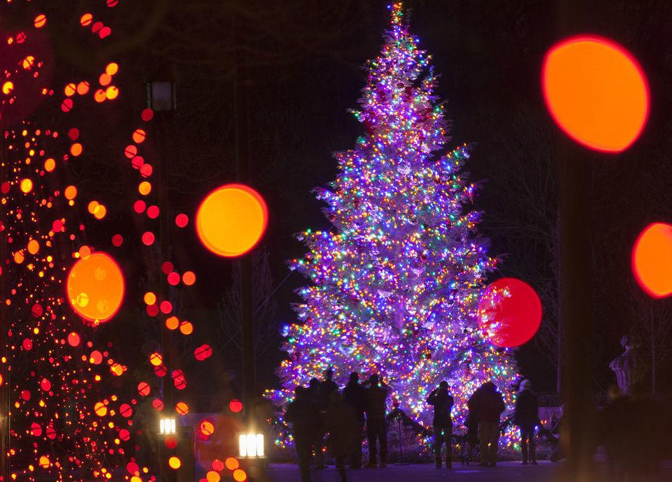 phillyfunguide longwood christmas
