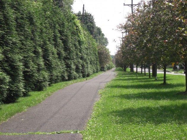 johnson trolley line trail