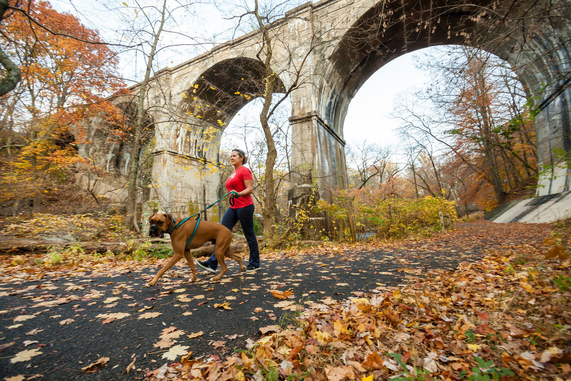 pennypack trail 1032